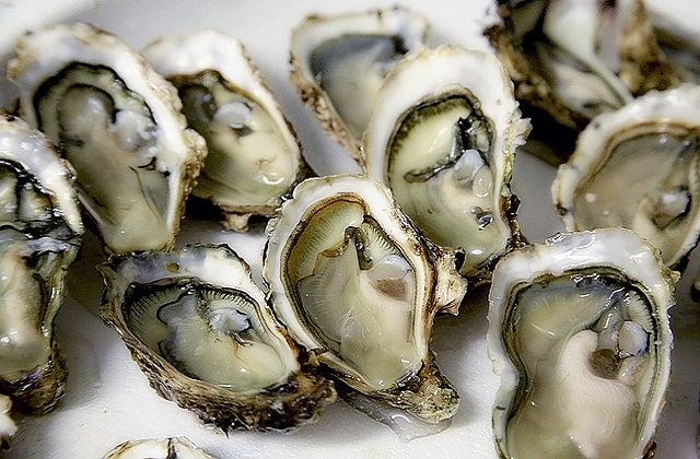 Oyster is fertility friendly and can help to increase chance of conception.