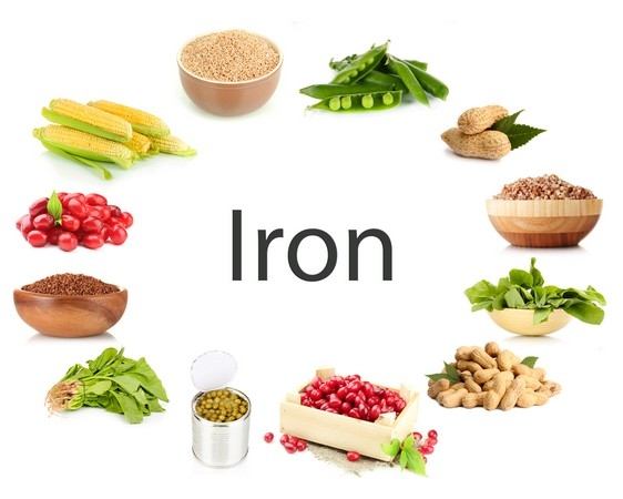 "According to American Pediatrics Academy, ""Iron is an essential nutrient that energizes children by helping to transport oxygen around the body"