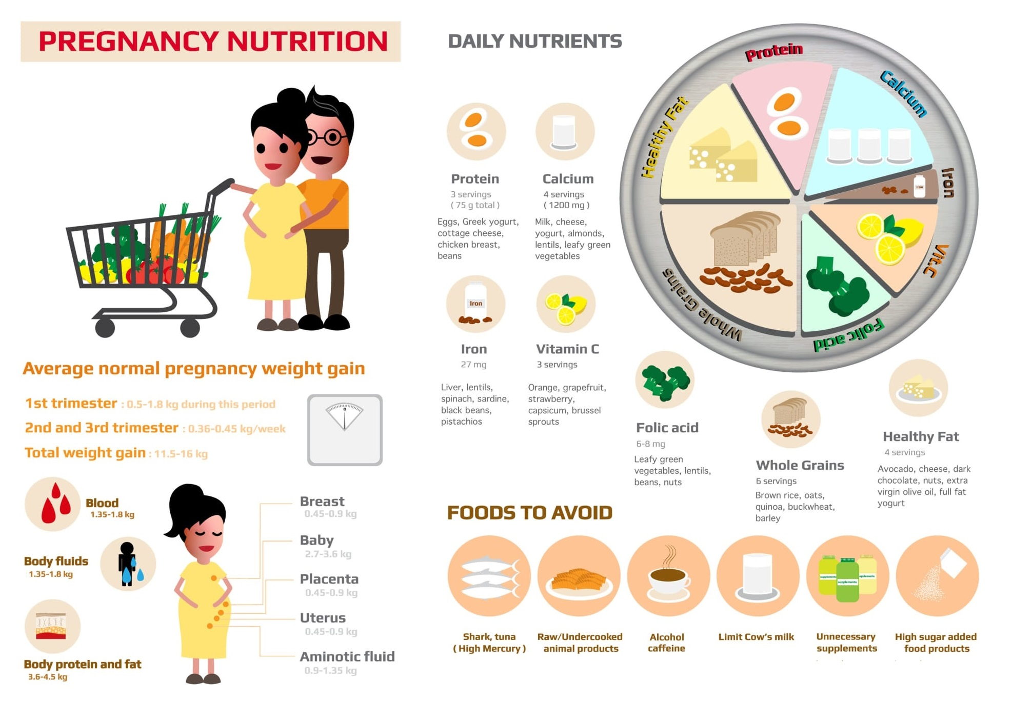 Pregnancy Nutrition: 7 daily nutrient during pregnancy. Food to avoid during pregnancy and average weight gain during pregnancy.