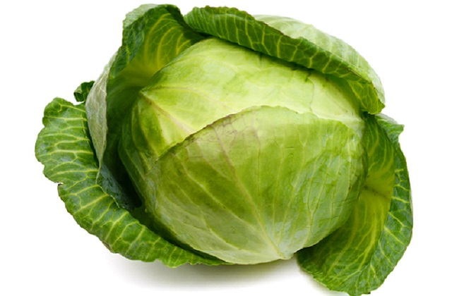 suitability of cabbage for expecting mother during pregnancy. Health benefits and nutrition value of cabbage for pregnant women
