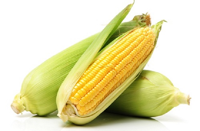 Health benefits of corn to pregnant women and the growing fetus.
