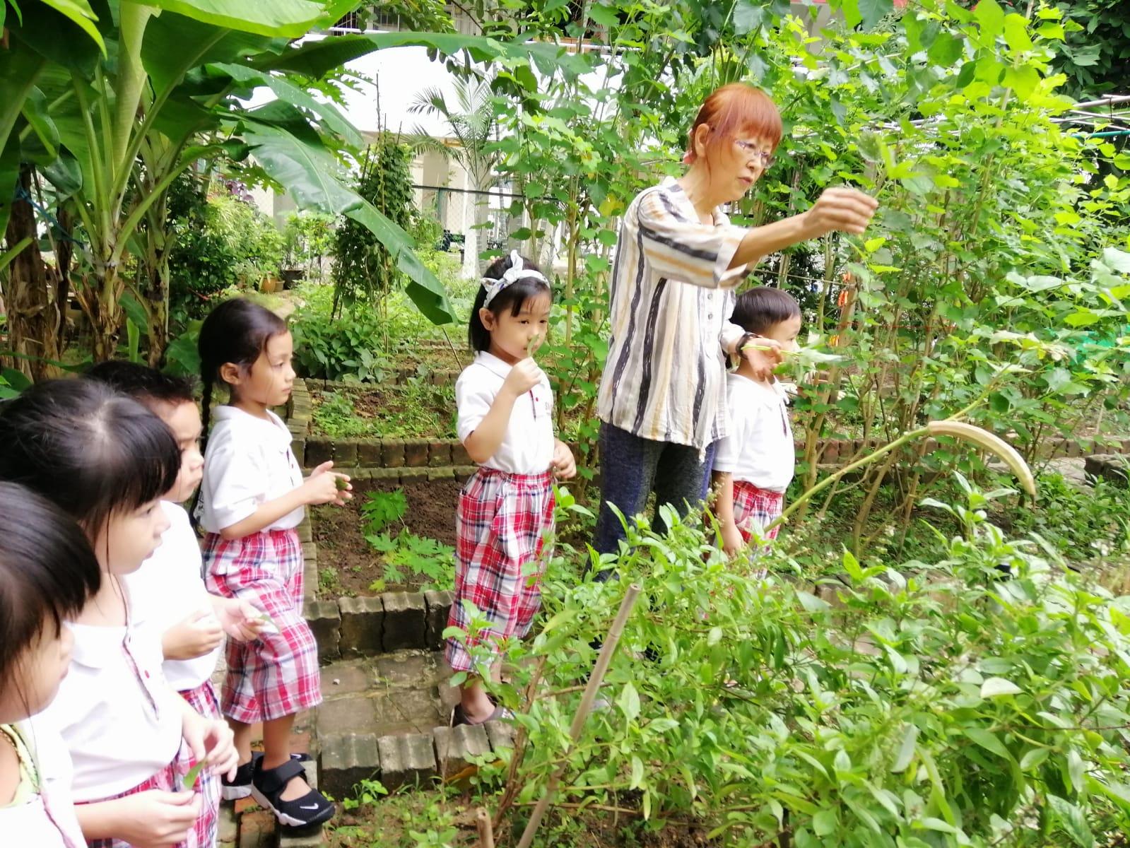 Smart Montessori Open House