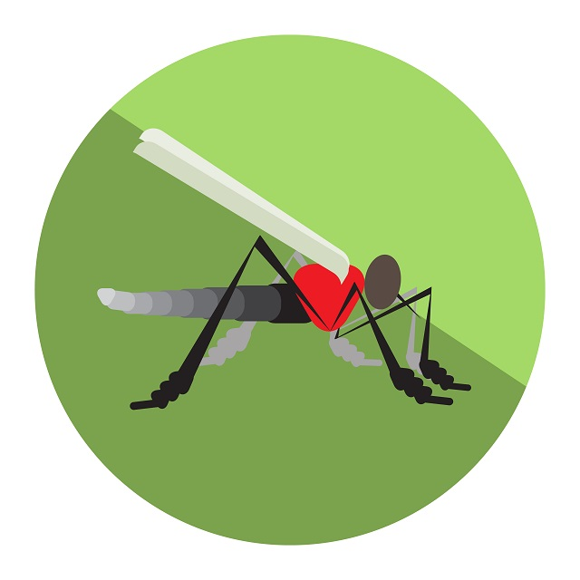 Symptoms,effect and prevention of Zika in Singapore