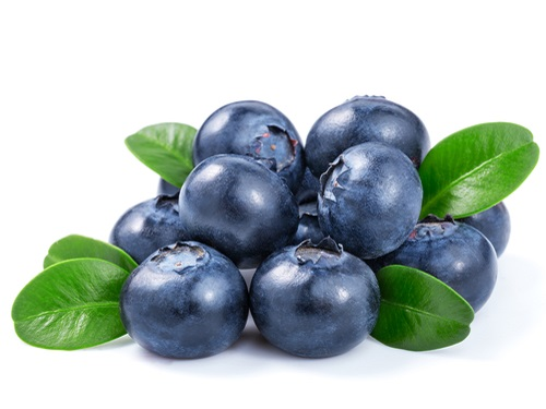 Is it safe to eat Blueberry during pregnancy,breastfeeding or whil trying to conceive? Is it healthy for infant,toddler,or children to eat Blueberry health benefits and nutrition value