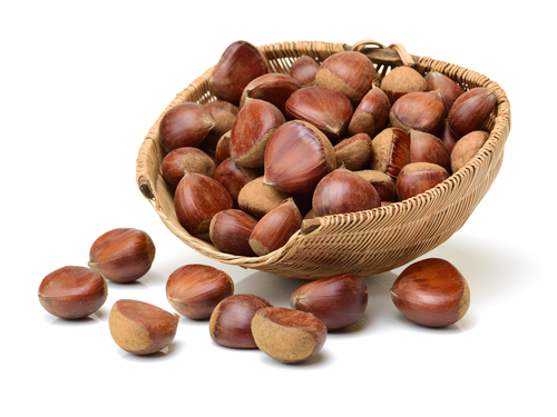 Is it safe to eat Chestnut during pregnancy,breastfeeding or whil trying to conceive? Is it healthy for infant,toddler,or children to eat Chestnut health benefits and nutrition value