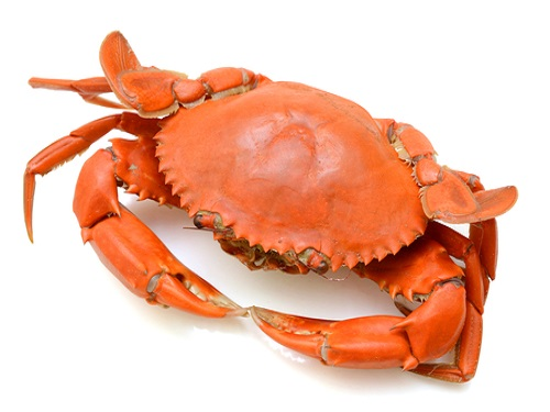 safe to eat crab