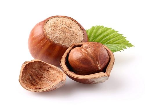 Is it safe to eat Hazelnut during pregnancy,breastfeeding or whil trying to conceive? Is it healthy for infant,toddler,or children to eat Hazelnut health benefits and nutrition value