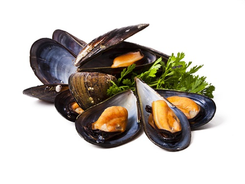 Is it safe to eat Mussel during pregnancy,breastfeeding or whil trying to conceive? Is it healthy for infant,toddler,or children to eat Mussel health benefits and nutrition value