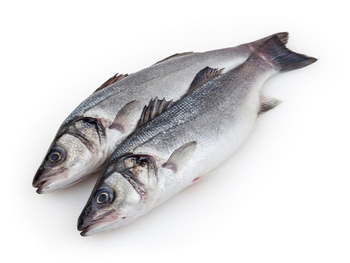 Is it safe to eat Seabass during pregnancy,breastfeeding or whil trying to conceive? Is it healthy for infant,toddler,or children to eat Seabass health benefits and nutrition value
