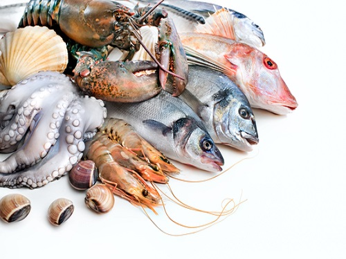 Can I eat? Is it safe to eat or healthy to eat? Nutrition value and health benefits, or any side effect of seafood